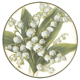 Flower- Lily Of The Valley